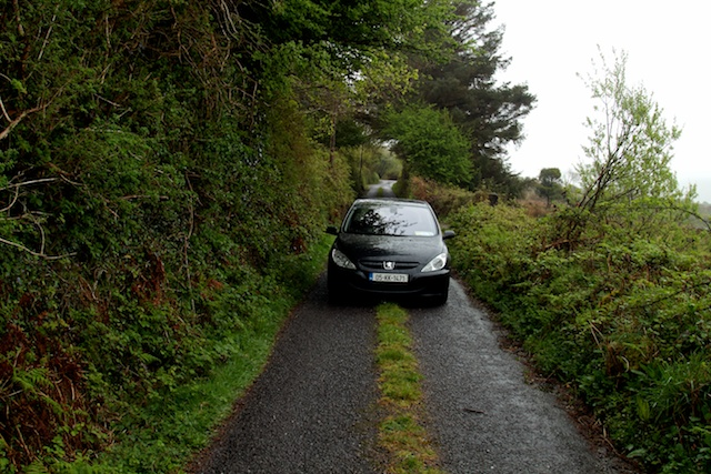 car on narrow road